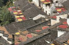 【婺源.篁岭】[太阳]篁岭古村位于江西省上饶市婺源县江湾镇,始建于明代,建村近600年,有着悠久的历