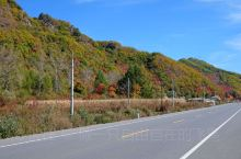 本溪县到桓仁县的本桓公路东段,特别是新开岭隧道与大凹岭隧道之间的20公里路段,被冠与中华枫叶之路的美