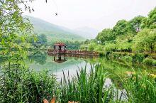 人间仙境—宜兴竹海 宜兴竹海是国家AAAA级旅游风景区,位于苏、浙、皖三省交界的宜兴南部山区,近1.