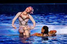亚特兰蒂斯有两大招牌网红项目,一个是《C秀》,一个是水族馆。 C秀在三亚·亚特兰蒂斯海豚湾剧场固定演