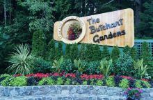 世界最美花园—布查特公园,位于维多利亚,BC省的首府,驾车到Tsawwassen Bay,乘渡轮(开
