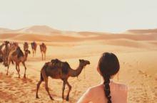 摩洛哥 撒哈拉沙漠  来撒哈拉沙漠主要是因为《小王子》,最爱的书之一,一本献给曾经是小孩的大人。