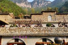 如果你在村里遇到这样的地方,古老的村落,窑洞前盛开的野菊花,柿子树上挂着金黄的柿子,坐在树下吃着搭配