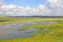 锡林郭勒大草原,这里既有一望无际、空旷幽深的壮阔美,也有风吹草低见牛羊的动态美;又有蓝天白云、绿草如