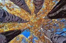 秋天美景!