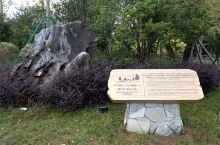 鼓岭风景区的映月湖公园是一个袖珍型的小小公园,由一个池塘与小桥构成,周边是一些绿地。