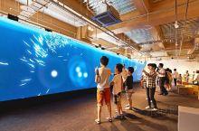 函馆亲子游推荐景点!超大LED萤幕、360度影像围绕高科技体验「函馆未来馆」家长们难得带小朋友来北海