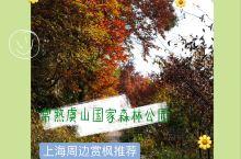 赏枫胜地-常熟虞山国家森林公园 这次订购了一条携程主题游的产品,虞山赏枫休闲徒步一日游,跟着专业领队