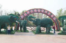 济南动物园游