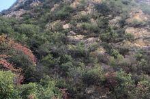 距离关中平原地区的西安市仅仅70公里竟然有如此壮观漂亮震撼的大峡谷,真是令人惊叹不已!门票60。景交