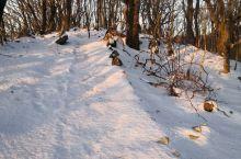 横冲的雪景别有一番滋味,闻着看着听着踏着摸着怎么都舒服,尤其是日出东方,今早上晨练正巧遇见,谢谢你!