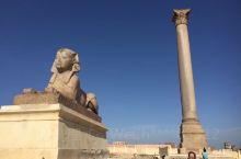 埃及亚历山大城的城徽_庞贝柱(萨瓦里石柱).庞贝柱又称骑士之柱,是一根粉红色亚斯文花岗岩石柱,柱顶顶