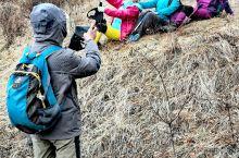 北灵山一曰三季风光。4月27曰约朋友去京城后花园北京第一高峰北灵山,寻找传说中的野非菜,踏青赏花。穿