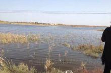 水资源丰富,水域宽广,鱼肥草深