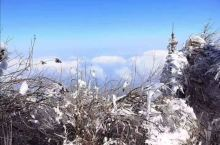 云上看雾松裘|打卡南岳之巅 对于生活在广东的小伙伴来说,仙气●飘渺的南岳之巅绝对是看雾淞的绝佳圣地。