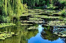 莫奈基金会(法语:Fondation Claude Monet)是一个负责维护法国画家克洛德·莫奈故