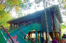胡志明故居 胡志明故居位于巴亭广场旁的主席府内。主席府的主体建筑是一栋由德国人建的法式别墅,颇为豪华