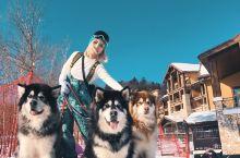 一起去看雪-长白山旅游度假滑雪-凯悦酒店 想去滑雪就约着朋友说走就走了本来想去北大壶但是看了一下攻略
