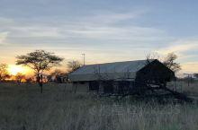 坦桑尼亚塞卢斯禁猎区是一处非常大型的自然国家公园。这里有着广袤的大草原,草原上河道纵横,是众多野生动