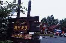 日本北海道是一个大乡下,到处都是商业气息淡薄的田园风光,而美瑛这个镇更是小众,除了日本游客以外很少其