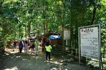 苏比克湾阿埃塔族野外生存Show(菲律宾) 可以目赌平均身高只有150 公分的土人,如何祇用一把刀,