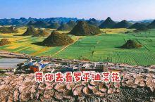 【带你去看罗平油菜花】 罗平峰林位于珠江源头,盆岭相间,每年二月,北国还千里冰封,万里飘雪时,罗平已