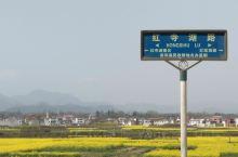 红寺湖在汉中算是一个非常非常小众的景点,但是就这么一个小众的景点还需要收门票?真正走进去逛了之后,你