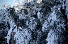 五岳衡山|冬季篇  衡山是个美丽的地方,处处都是景。衡山群峰巍峨、气势磅礴,冬日来衡山欣赏雪景是最适