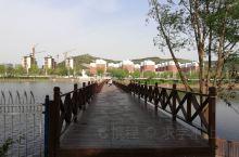 龙湖公园上的水上札桥。