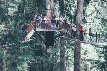 卡皮拉诺公园 | 温哥华最古老的景点 · 卡皮拉诺吊桥公园是北温哥华最著名的旅游景点,也是温哥华历史
