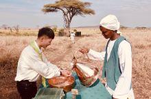 享乐非洲|坦桑尼亚Tanzania 属于坦桑尼亚大草原的句号,是热气球。 气球飞得不高,很多时候是贴