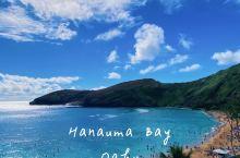 夏威夷 恐龙湾浮潜圣地