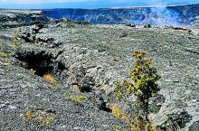 夏威夷火山国家公园,建议买年票,所有美国国家公园都可以进入,包括车与乘客。