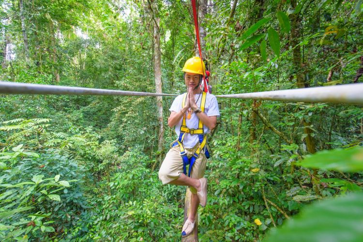 Xishuangbanna Tropical Rainforest Nature Reserve4