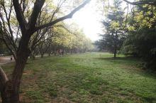 初春的青龙湖