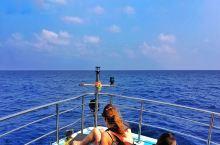 在印度洋上兜兜转转五个多小时,终于看到了鲸鱼!