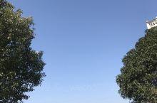 春光明媚,蓝天白云