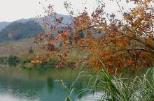 从化溪头村的晨景