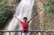 神龙谷景区  盛夏在浙江玩到的最满意的一个景点,开车到山顶进景区由山上往山下走,绿化茂密成林,抵挡了