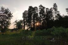 夕阳西下的森林。