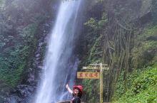 云南有许多热带雨林,莫里热带雨林景区位于瑞丽市东北25公里,属国家4A级风景名胜区内。这里温暖湿润,