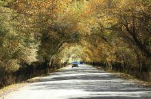 拉萨林周县的秋色美极了,像这样的时空隧道到处都是,真是拍不够,看不够。你来,或者不来,美景都在那里。