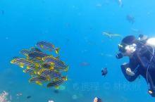 潜水胜地 图兰奔,被称为世界最美的50个潜水胜地之一。位于印度尼西亚巴厘岛东北部,最大的特色是海底一