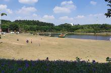广州大学城的湖景,很不错的休闲去处!