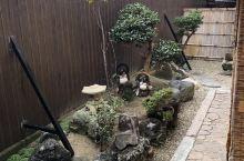 奈良 IMAI TOMOKO民宿的 lovely小院子。 不知道两只ponpoko 会不会在月下拍皮