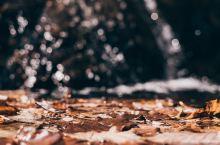 秦岭深处,层林尽染,秋景如画。 从西安驱车走沣峪口,越过秦岭分水岭至宁陕广货街,再顺102省道广货街