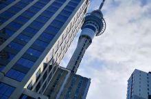 都市 新西兰·大洋洲
