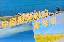 """中国‖青海湖‖""""青海无波春雁下,草生碛里见牛羊""""  推荐理由  这里有平静的湖水,湛蓝的天空,雪白的"""