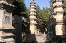 塔林 塔林位于河南少林寺西侧一里许的五乳峰脚下,是少林寺历代住持僧的归葬地,清幽肃穆,也许你能从这儿