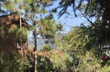 天露山:景致好,步一景,最美的风景在路上。